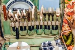 Organiza el picnic perfecto para tu familia